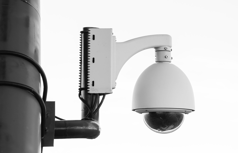 Wildlife Crime Surveillance Camera